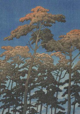 Detail van een wandkleed doek